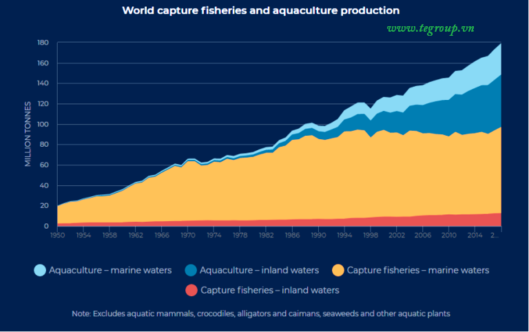 World Capture Fisheries